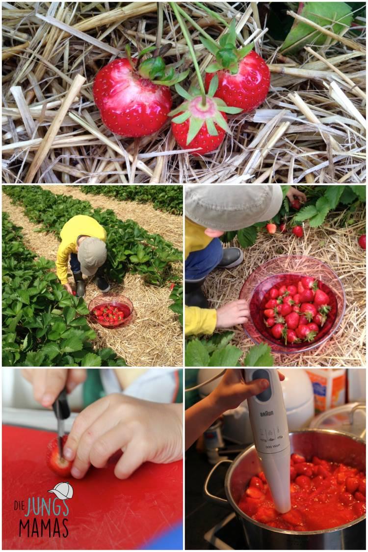 Erdbeer pfluecken