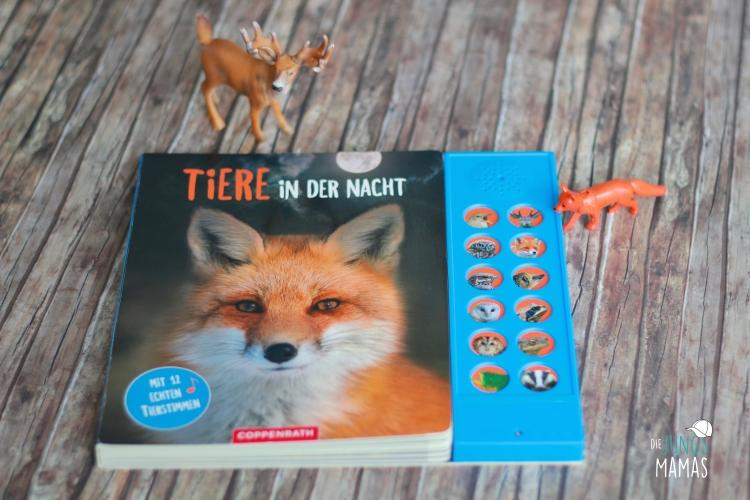 Tolles Soundbuch - Tiere in der Nacht - ab 6 Jahren