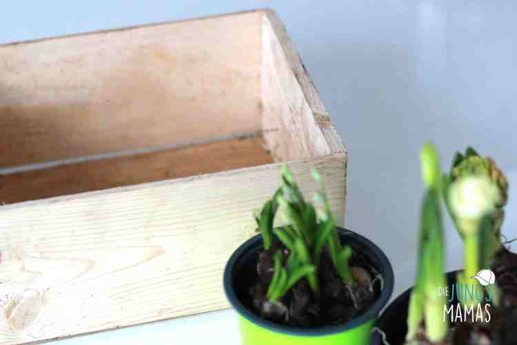 Holzbox für Upcycling _ Die JungsMamas